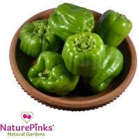 Capsicum Green Organic 500g