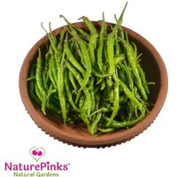 Chilli Green Organic 250g