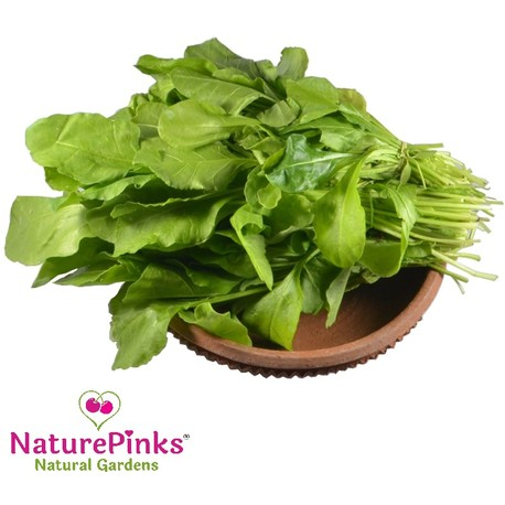 Palak Leaf Organic 4 bunches