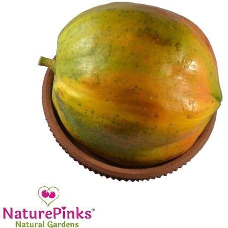 Papaya Large Organic