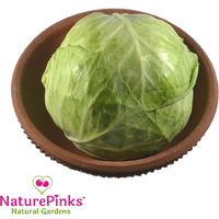 Cabbage Organic 1pc