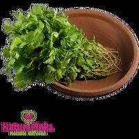 Coriander Leaf Organic 2 bunches