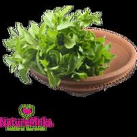 Pudina Leaf Organic 2 bunches