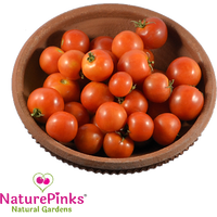 Tomato Baby Type Organic 1kg