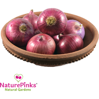 Onion Medium Organic 1kg